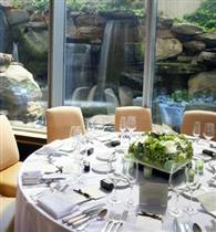 The Waterfall Room photo