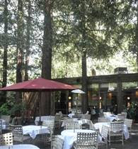 Redwood Forest Patio photo