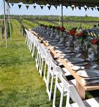 Ravine Vineyard Marquee photo